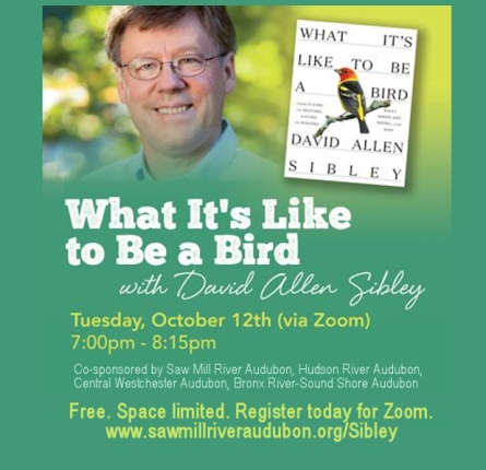 What It's Like to be a Bird with David Allen Sibley via ZOOM (Registration)
