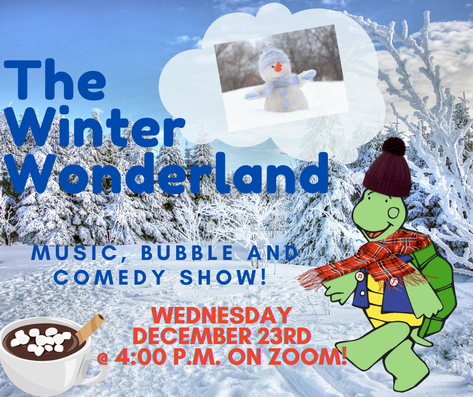 Turtle Dance Music promotional image featuring turtle walking through snowy woods.